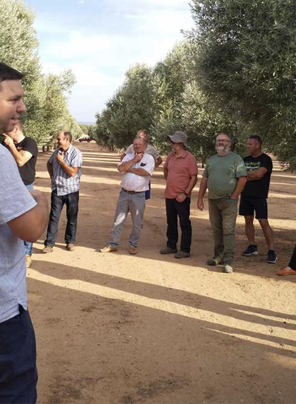 """Los participantes de las """"Jornadas de buenas prácticas para la obtención de AOVE"""" visitan nuestro olivar"""